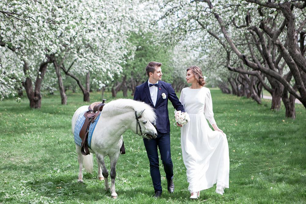 жених и невеста в цветущем саду яблонь