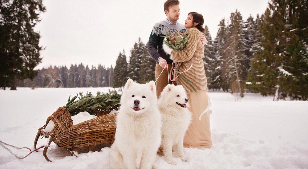 жених и невеста с самоедами